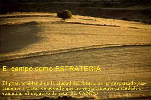 EL CAMPO COMO ESTRATEGIA